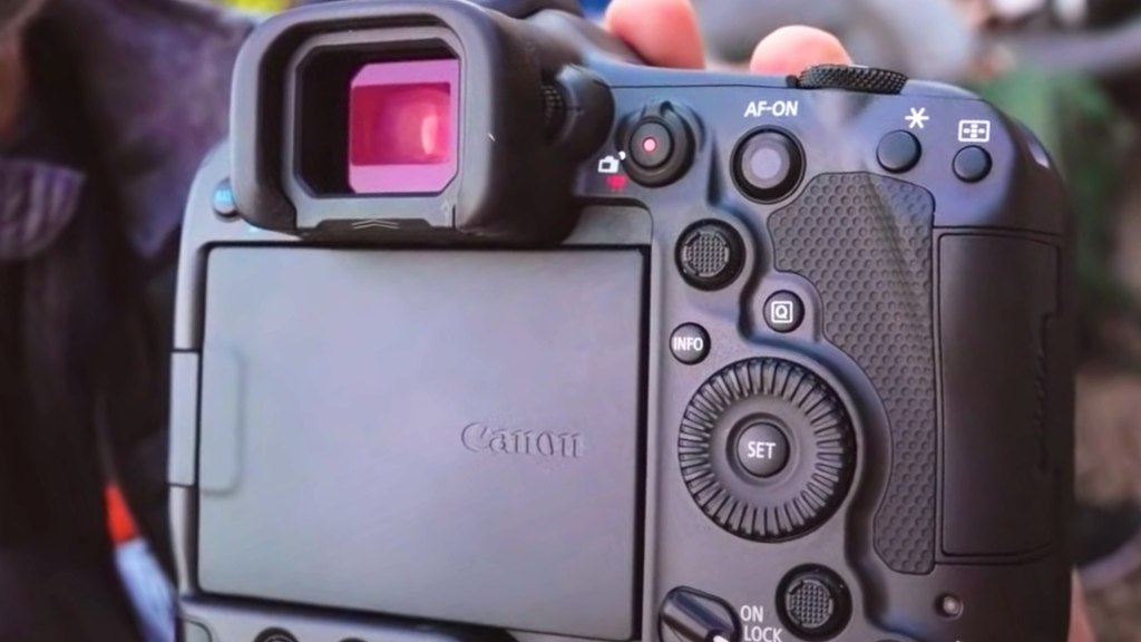 L'interface arrière du Canon EOS R3.  Photo : Gianluca Bocci