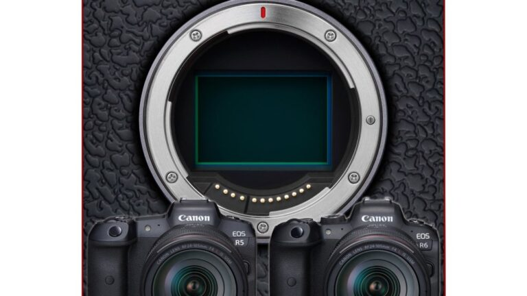 Canon a publié la liste des améliorations EOS R5 et EOS R6